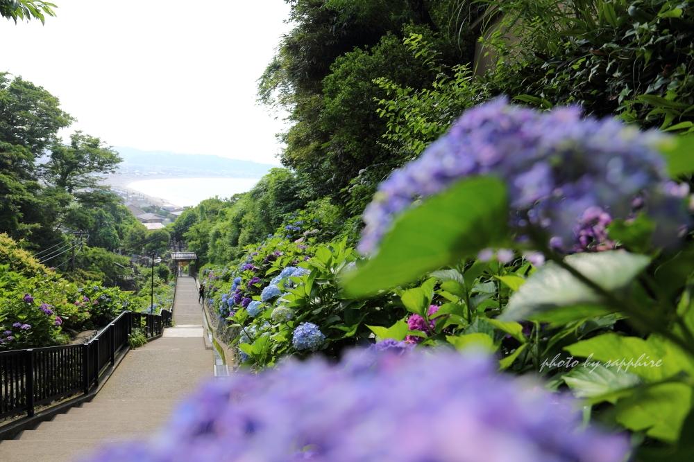 Kamakura5_2
